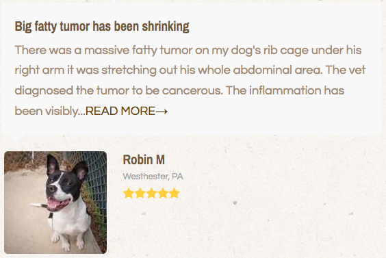 pet cbd testimonial about tumors