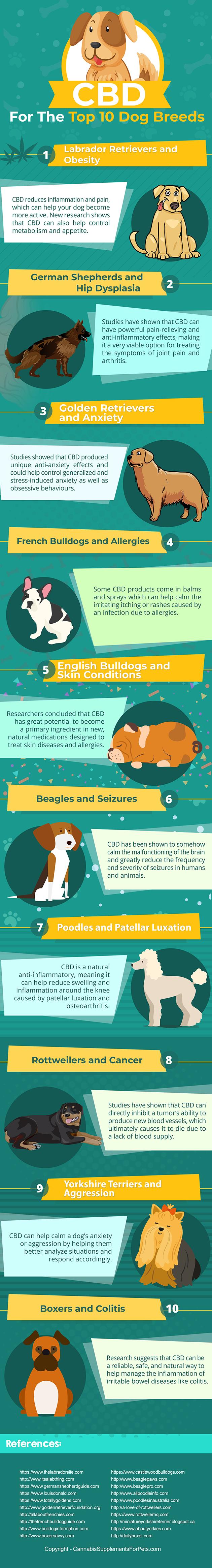 Infographic on CBD for dog breeds