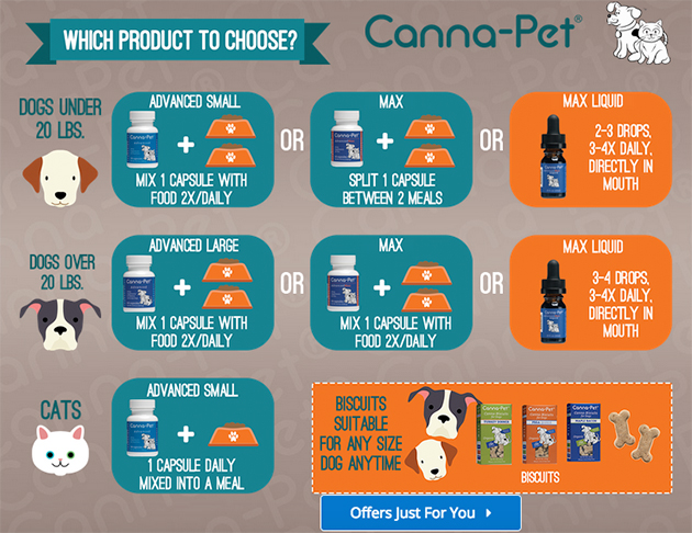 chart explaining how to use CBD for pets