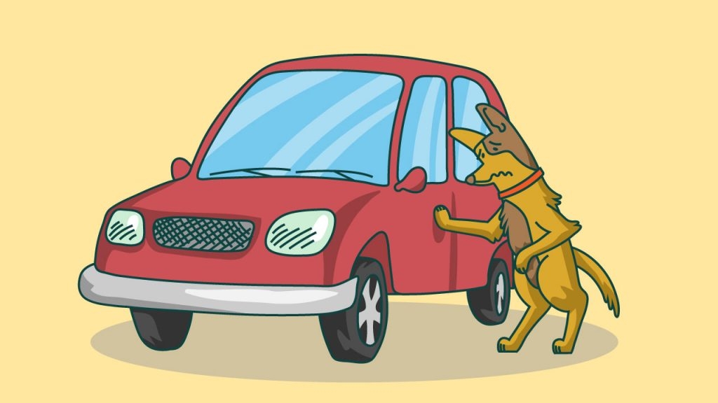 motion sickness medications for dogs
