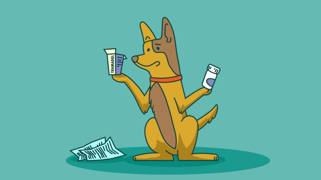 tramadol alternatives for dogs