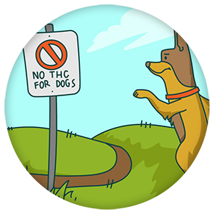 no thc for dogs sign