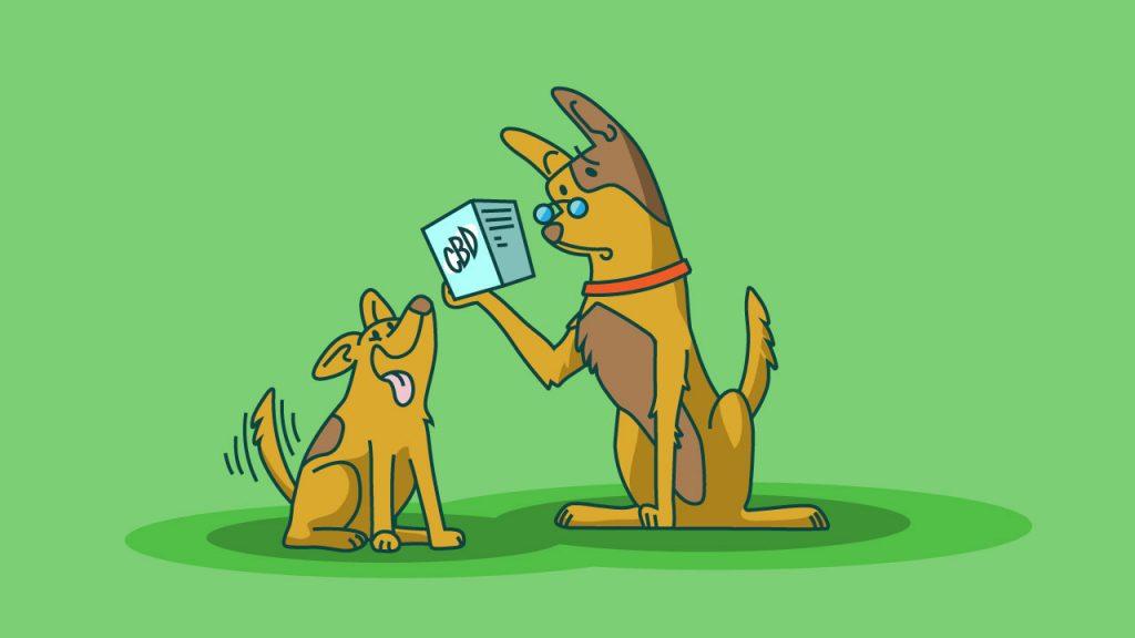 cbd for puppies
