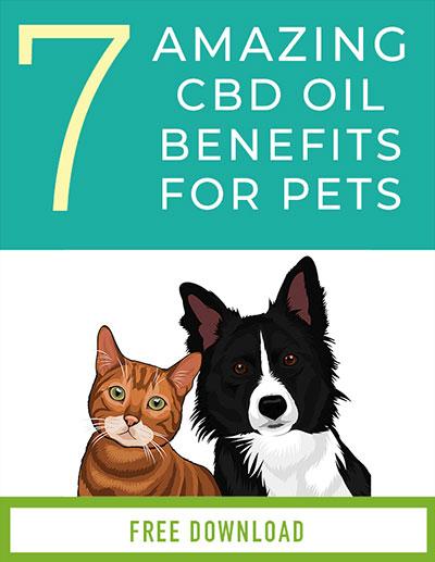 CBD Oil for Pets Book Cover